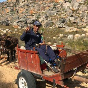 Culture Lab on Cederberg Horse Cart